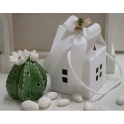 Fiore di Cactus con led confezionato