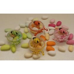 Scatolina tonda trasparente vuota con CocciNella 4 colori assortiti